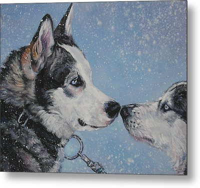 Siberian Huskies In Snow Metal Print by Lee Ann Shepard
