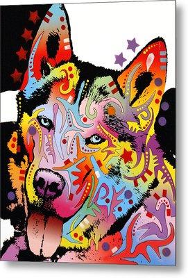 Siberian Husky 2 Metal Print by Dean Russo