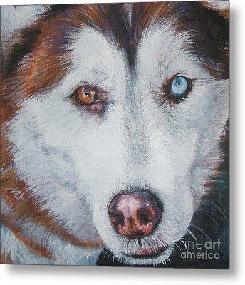 Siberian Husky Red Metal Print by Lee Ann Shepard
