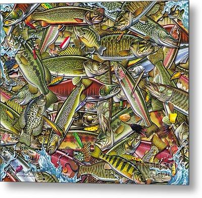 Side Fish Collage Metal Print by Jon Q Wright JQ Licensing