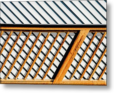 Metal Print featuring the photograph Side Step by Paul Wear