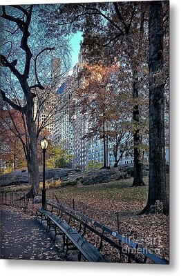 Metal Print featuring the photograph Sights In New York City - Central Park by Walt Foegelle