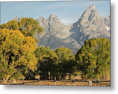 Metal Print featuring the photograph Signs Of Autum by Colleen Coccia