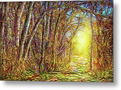 Silence Of A Forest Path Metal Print