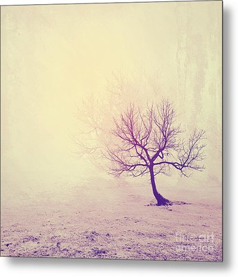 Silence To Chaos - 13t Metal Print by Variance Collections