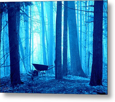 Metal Print featuring the photograph Silent Forest by Al Fritz