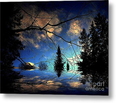 Metal Print featuring the photograph Silent Night by Elfriede Fulda