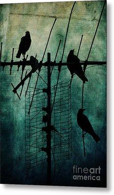 Silent Threats Metal Print by Andrew Paranavitana