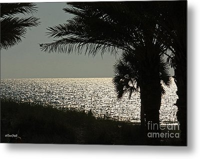 Silhouetted Sunset Metal Print by Terri Mills