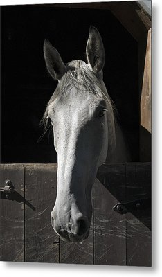 Silver Metal Print by Jack Goldberg