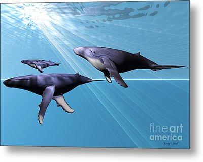 Silver Sea Metal Print by Corey Ford