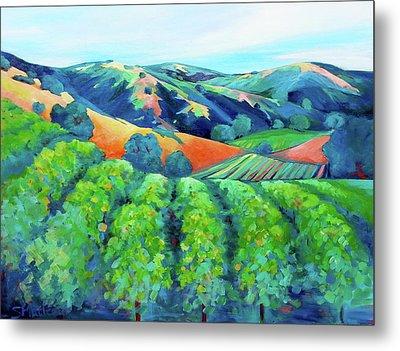 Silverado Trail Vineyard Metal Print by Stephanie  Maclean