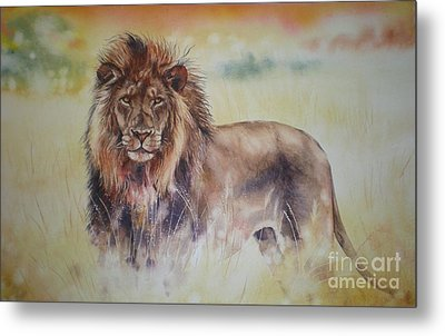 Simba Metal Print by Sandra Phryce-Jones