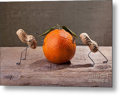 Simple Things - Antagonism Metal Print by Nailia Schwarz
