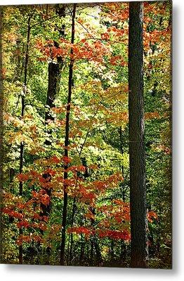 Simply Autumn Metal Print by Joan  Minchak