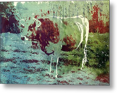 Single Cow Metal Print by Jutta Maria Pusl