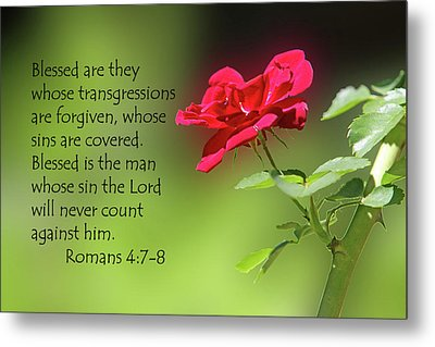 Single Red Rose Romans 4 V 7-8 Metal Print