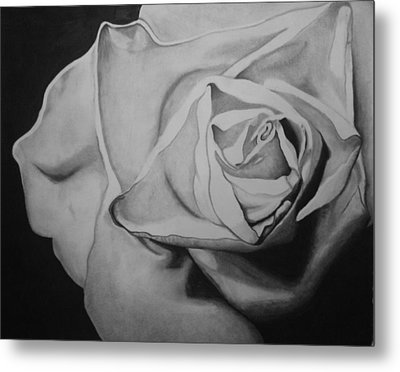 Single Rose Metal Print by Jason Dunning