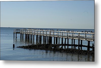Sittin' On The Dock By The Bay Metal Print by Charles Kraus