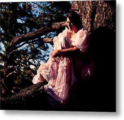 Sitting In A Tree Metal Print by Scott Sawyer
