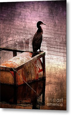 Sitting On The Dock Of The Bay Metal Print by Clare Bevan