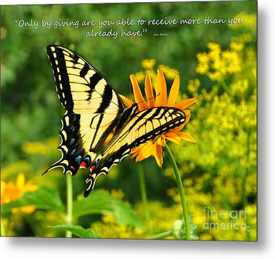 Metal Print featuring the photograph Sitting Pretty Giving by Diane E Berry