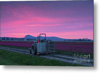 Metal Print featuring the photograph Skagit Valley Dusk Calm by Mike Reid