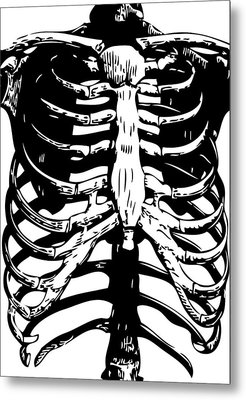 Skeleton Ribs Metal Print by Eclectic at HeART