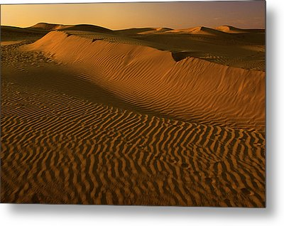Skn 1127 The Golden Dunes Metal Print