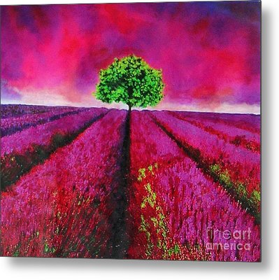 Sky And Field Aflamed Metal Print