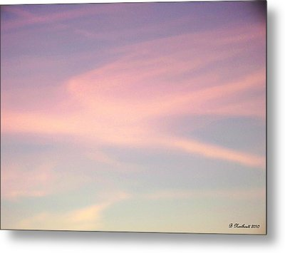 Metal Print featuring the photograph Sky Dancer by Betty Northcutt