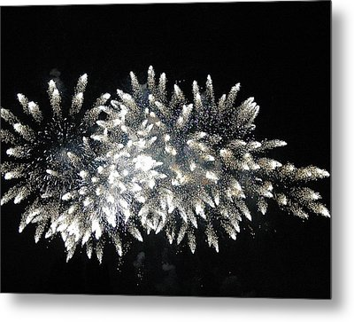 Sky Flowers Metal Print by Dan Fulk