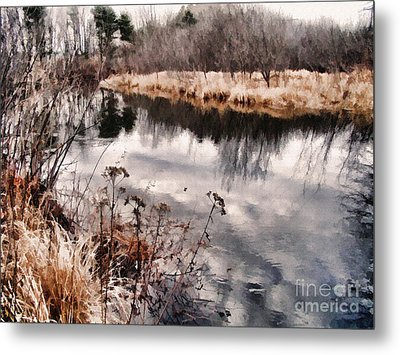 Metal Print featuring the photograph Sky Low by Betsy Zimmerli