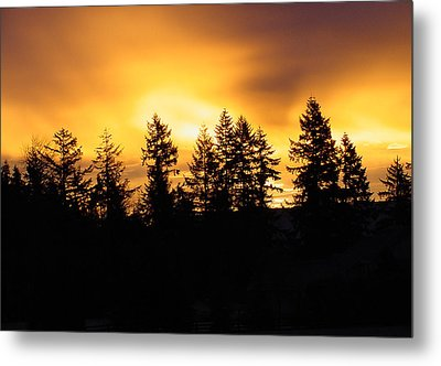 Sky On Fire Metal Print by Shirley Heyn