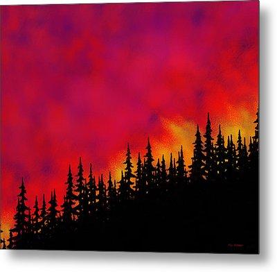 Sky On Fire Metal Print by Tim Stringer