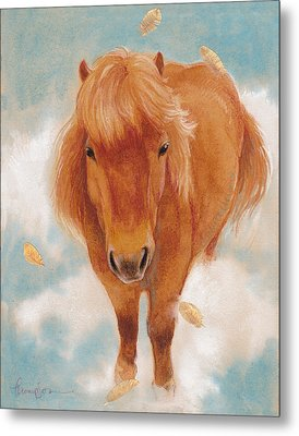 Skye In The Clouds Metal Print by Tracie Thompson