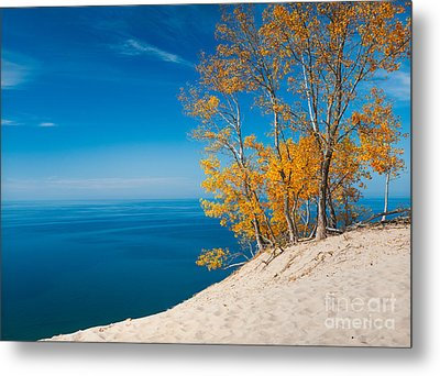 Sleeping Bear Dunes Vista 002 Metal Print