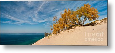 Sleeping Bear Overlook Metal Print