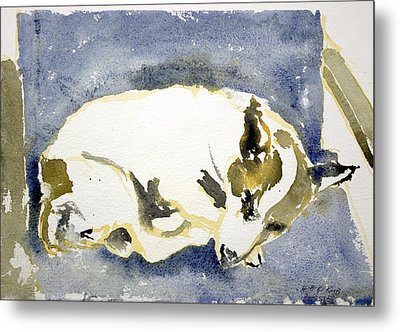 Sleeping Dog Metal Print