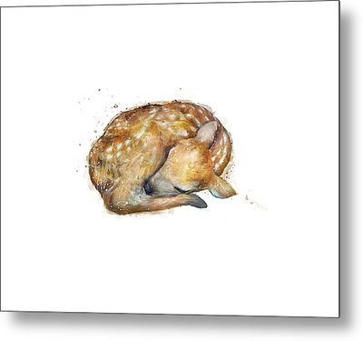 Sleeping Fawn Metal Print