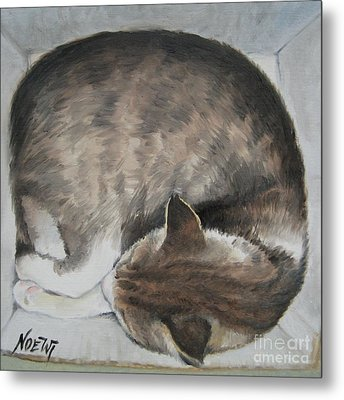 Sleeping Kitty Metal Print by Jindra Noewi