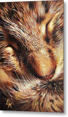 Sleeping Tabby Metal Print by Elena Kolotusha