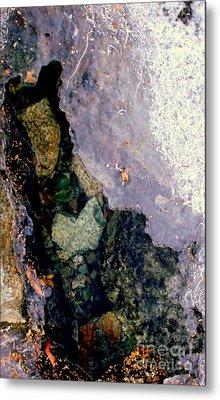 Slice Of Ice Metal Print by Farzali Babekhan