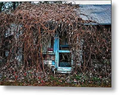 Slightly Overgrown Metal Print by Christopher Holmes