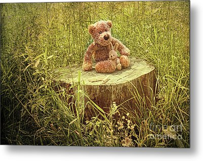 Small Little Bears On Old Wooden Stump  Metal Print by Sandra Cunningham
