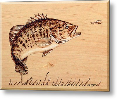 Metal Print featuring the pyrography Small Mouth Bass by Ron Haist
