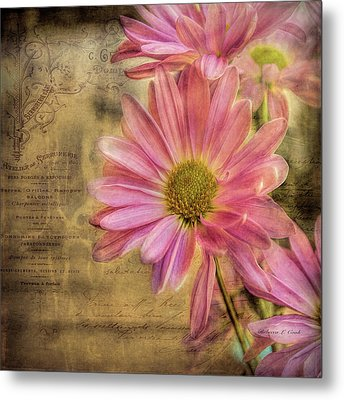 Metal Print featuring the photograph Small Perfections by Bellesouth Studio
