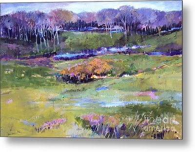 Metal Print featuring the painting Small Valley by Diane Ursin