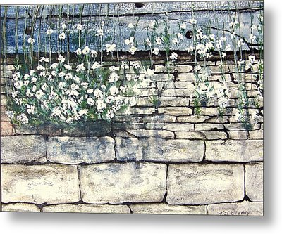 Small White Flowers Metal Print by Terence John Cleary