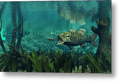 Smallmouth Bass Metal Print by Walter Colvin